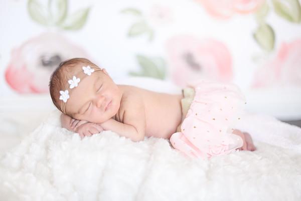 Newborn Ellie H