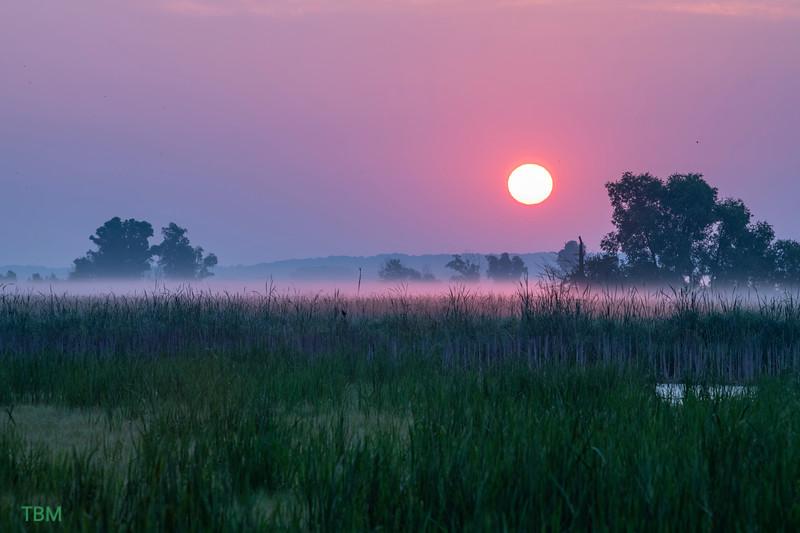 horicon sunrise20210720.jpg