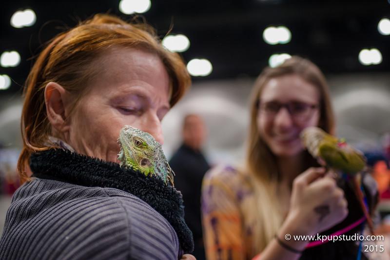Winter Wonderland - Pet Expo 2015