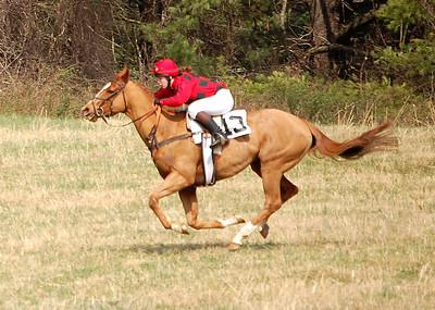 Warrenton Hunt Races