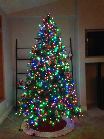 2012-12-08 New Christmas tree