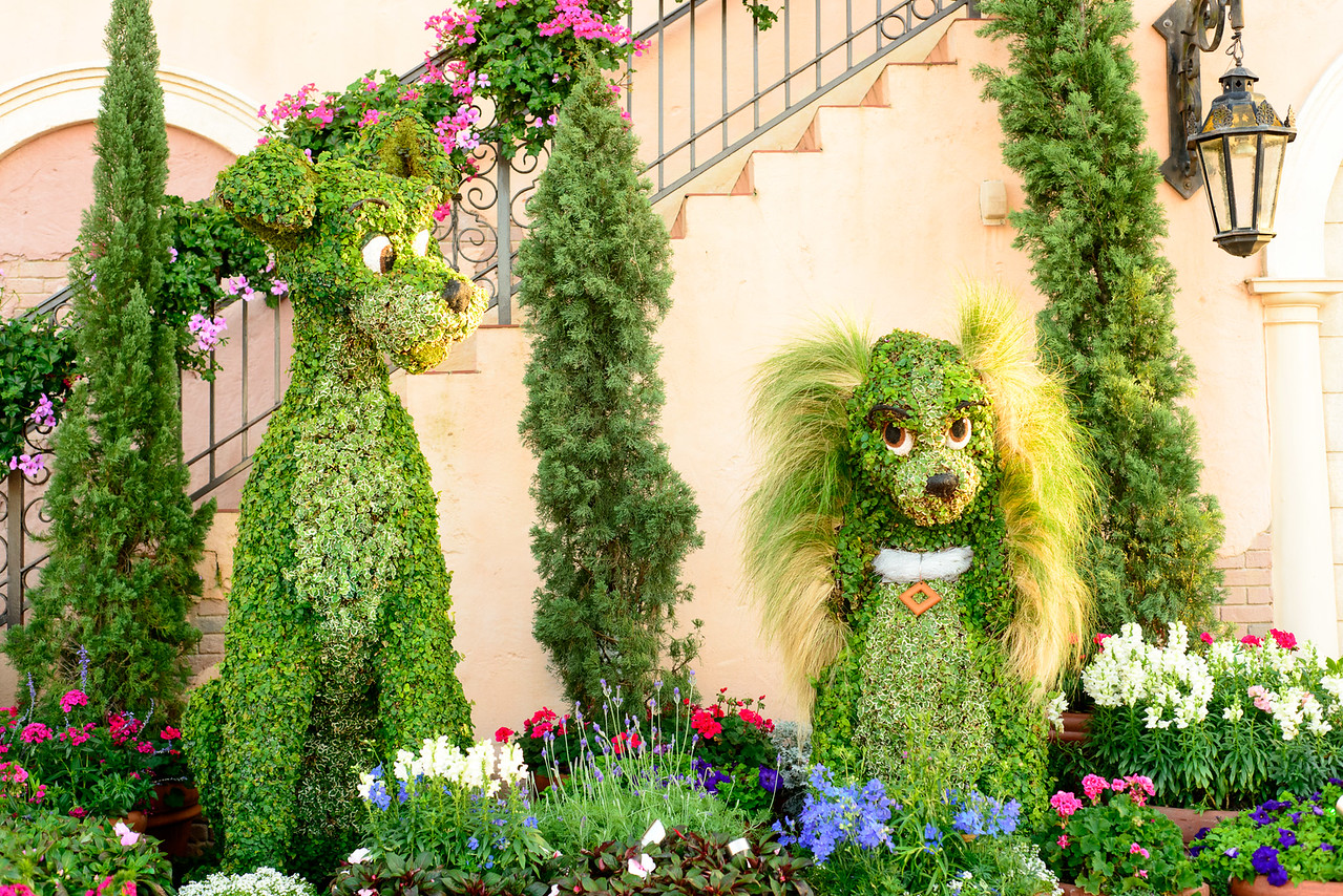 Lady and the Tramp Topiary - Epcot Flower & Garden Festival 2016