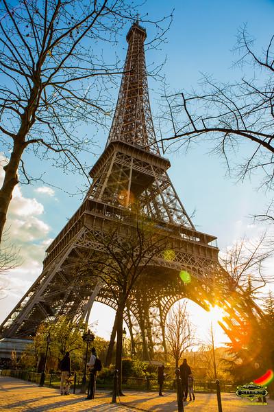 EiffelTower24x36-6572.jpg