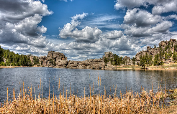 Custer State Park -  South Dakota