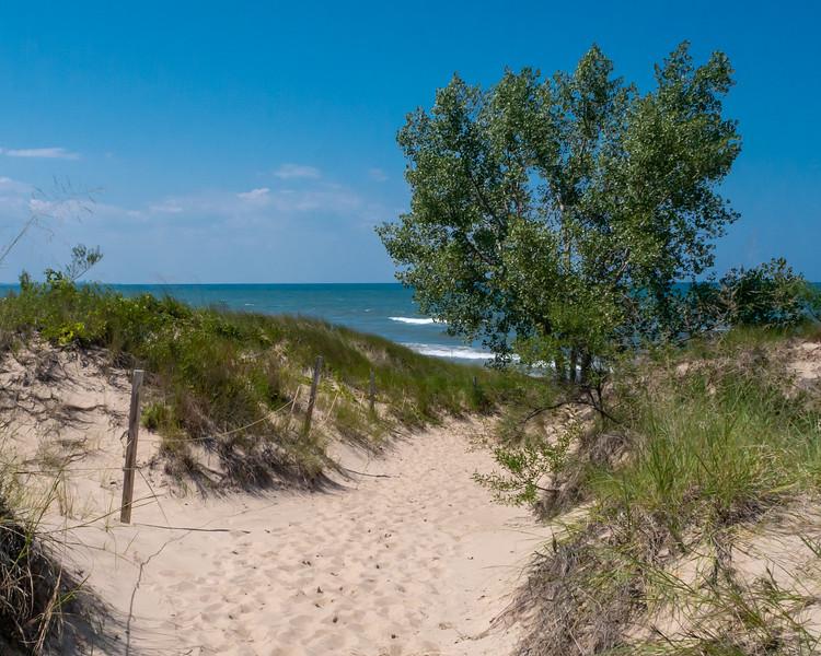 Trail to Lake Michigan, Indiana Dunes National Lakeshore