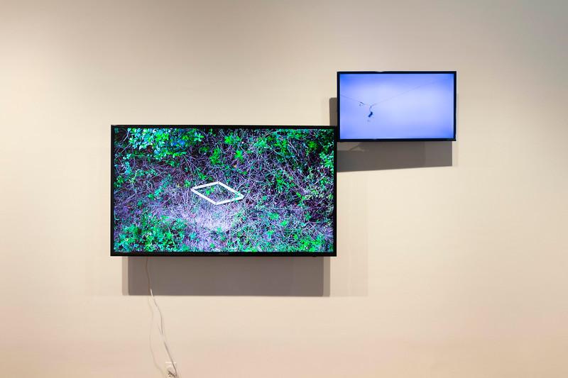 Jamilah Sabur, Untitled (rhombus: above Lake Apopka  North Shore), 2017