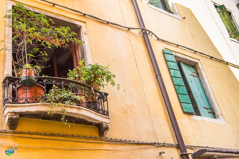 Venice-2011-5514.jpg