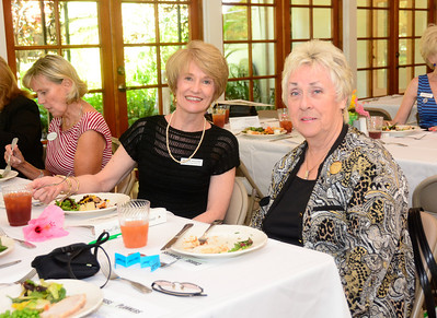 2014 May Luncheon