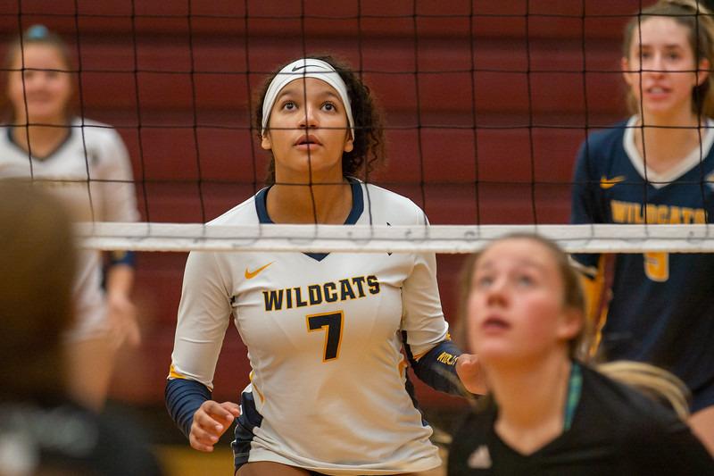 OHS VBall at Seaholm Tourney 10 26 2019-113.jpg
