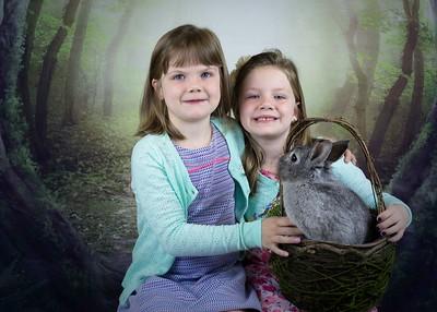 Bunny woodland