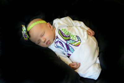 Hollyn Newborn