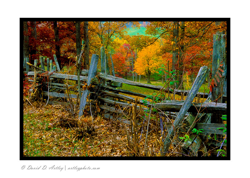 Rail Fence and autumn colors, Seneca, WV