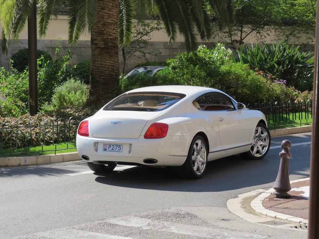 Streetlife in Monaco