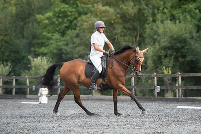 NFRC Evening Dressage - 12th July 2018