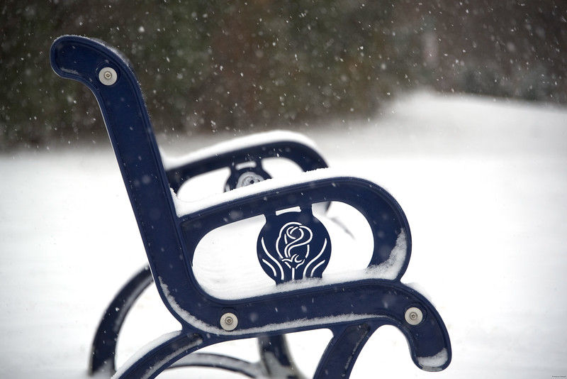 Seat-storm