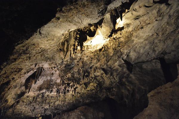 January 2020 Carlsbad Caverns New Mexico