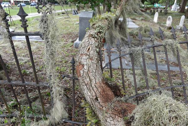Oak Grove Cemetery Damage after Hurricane Hermine 09-02-16