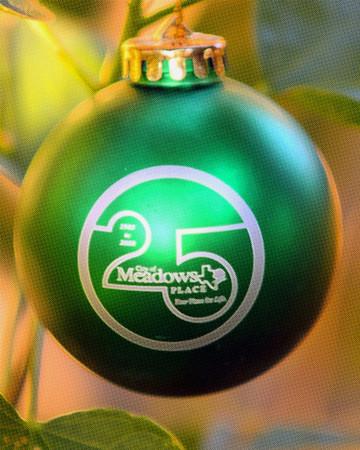 Meadows 25th Anniversary