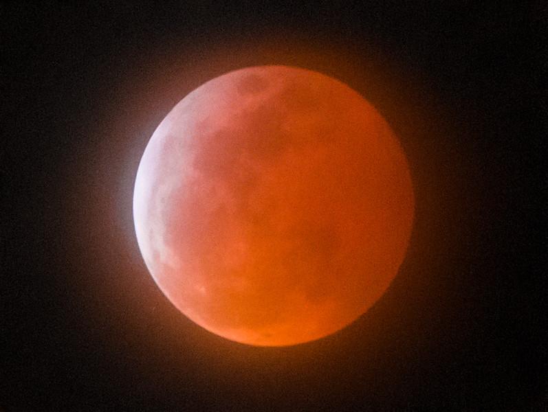 Lunar Eclipse Super Blood Moon-6-Edit.jpg