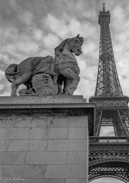 horse and eiffel tower.jpg