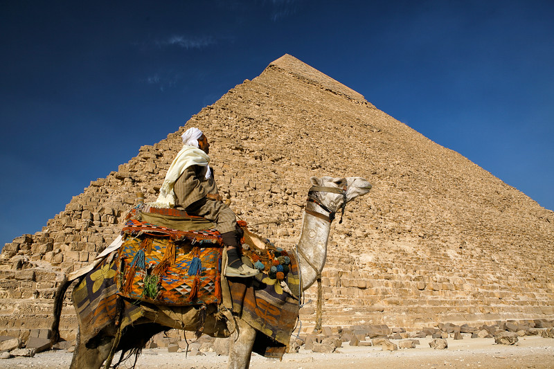 In the Shadow of the Pharaoh