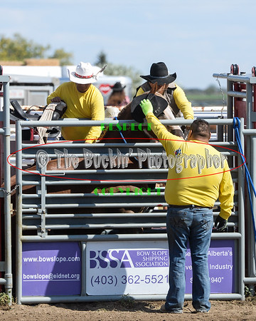 Patricia Rodeo 2018 Wild Horse Race 2nd Go
