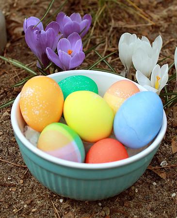 Eostre Eggs 2013