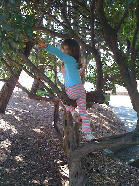 Putting those gymnastics skills to good use