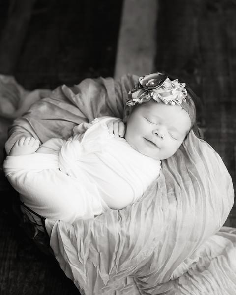 Madelyn Ellison Newborn