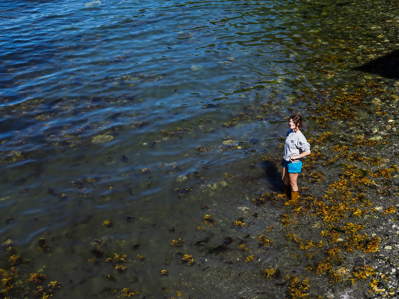 Steamboat Bay 2017 - 0022.jpg