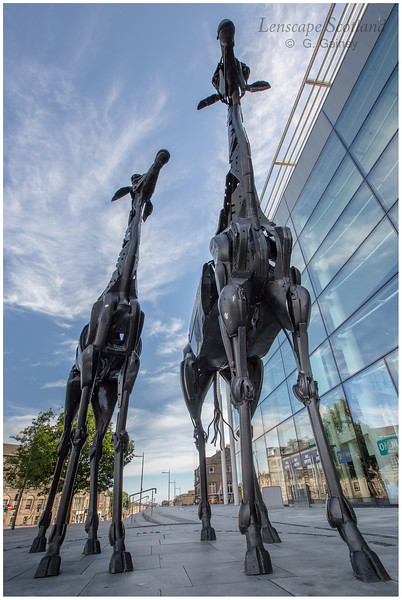 Giraffe sculpture outside the Omni Centre, Greenside Place (4)