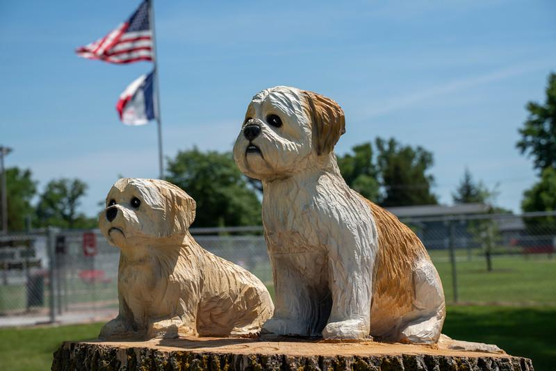 Missouri Valley Dog Park