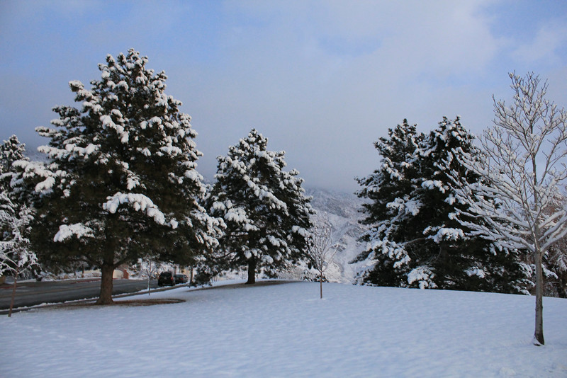 Winter_Scenery_12_19_2012_4113.JPG