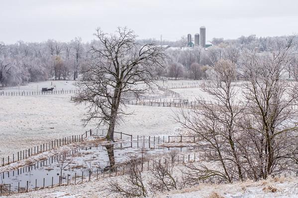 Ice Storm In Elmira
