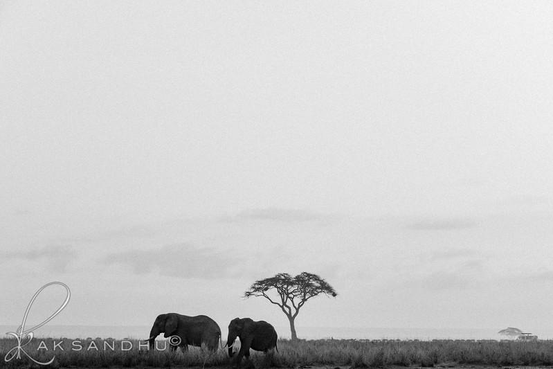SunInAfrica-024.jpg