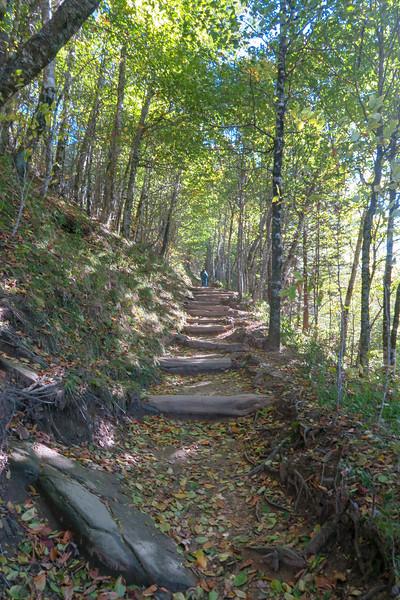 Appalachian Trail - 5,050'