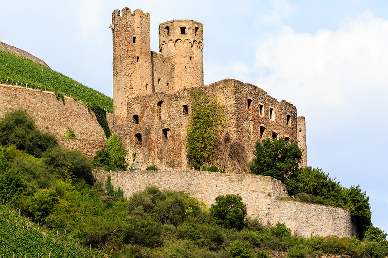 Castles, vineyards, and quaint villages along the Upper Middle Rhein Valley.