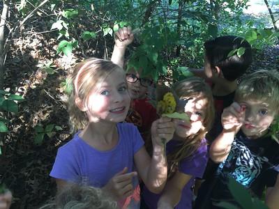 kindergarten fall fun and nature spy