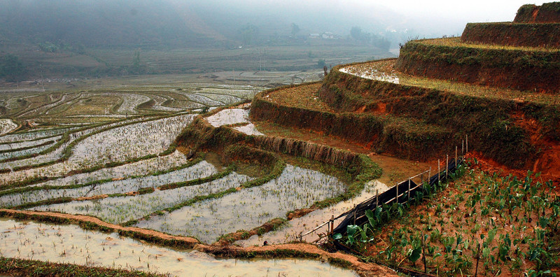 Vietnam 2008-087.jpg