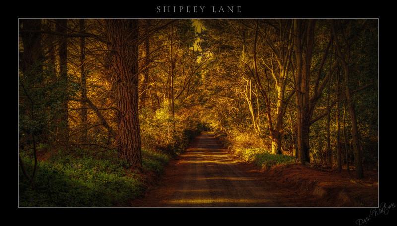 Shipley Lane
