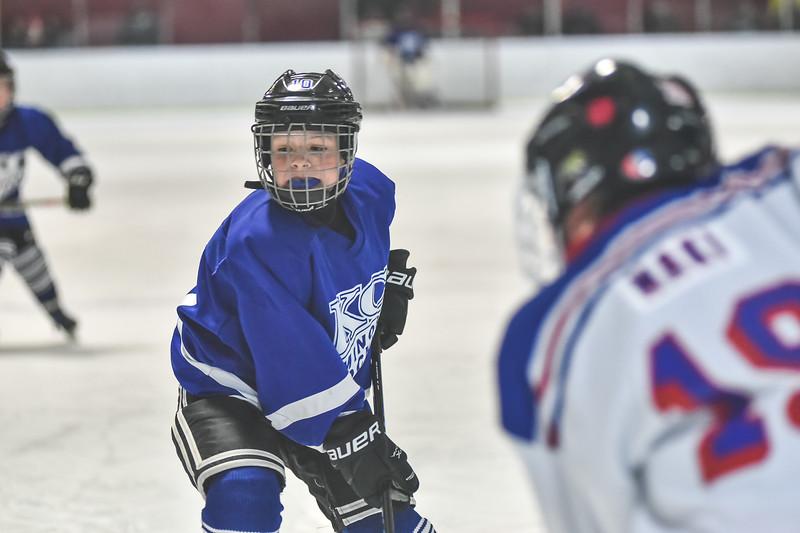 Leafs-73.jpg