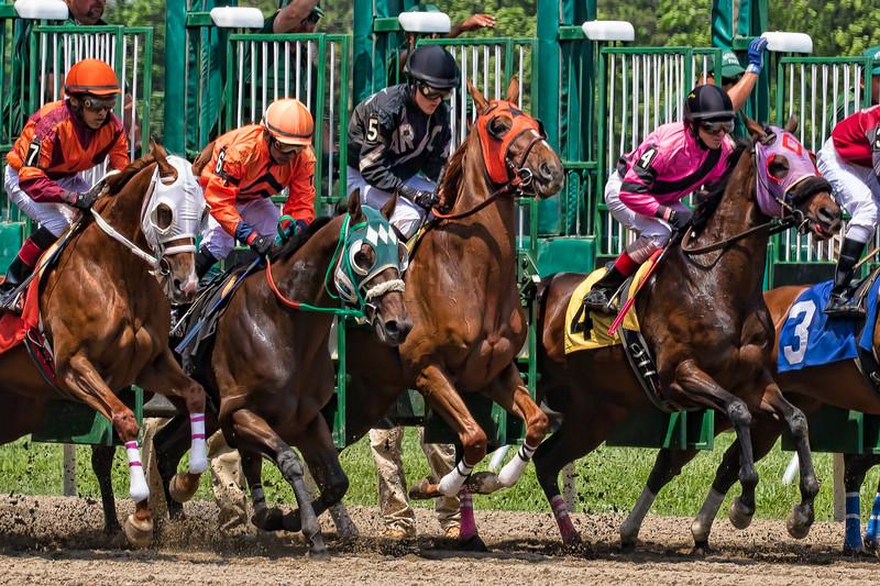 monmouth park horse crash 3507--15.jpg