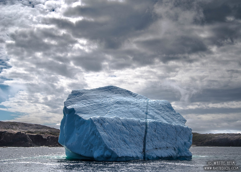 Iceberg   9     Photography by Wayne Heim