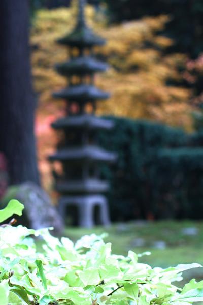 Portland Japanese Garden  11-11-11  3518.jpg