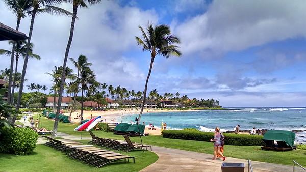 2016b Hawaii