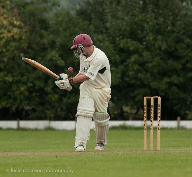 110820 - cricket - 069-3.jpg