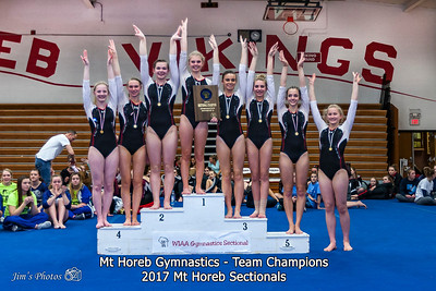 HS Sports - Mt Horeb Sectional - February 23, 2017