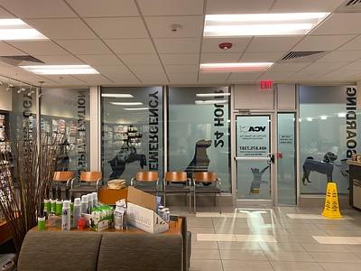 VCA Midtown Window Installation