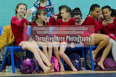 Wolverhampton Schools Gymnastics - March 2015