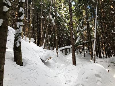 Rattlesnake Mountain - 3/1/19